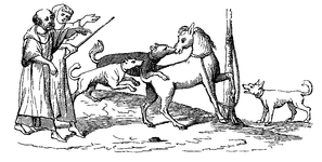Fight between a horse and dogs