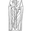 Costume of a bishop