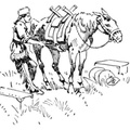 A Pack Horse