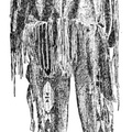 Indian Costume (Male)