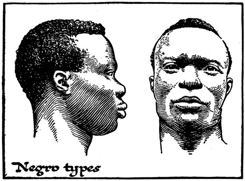 Negro Types.png