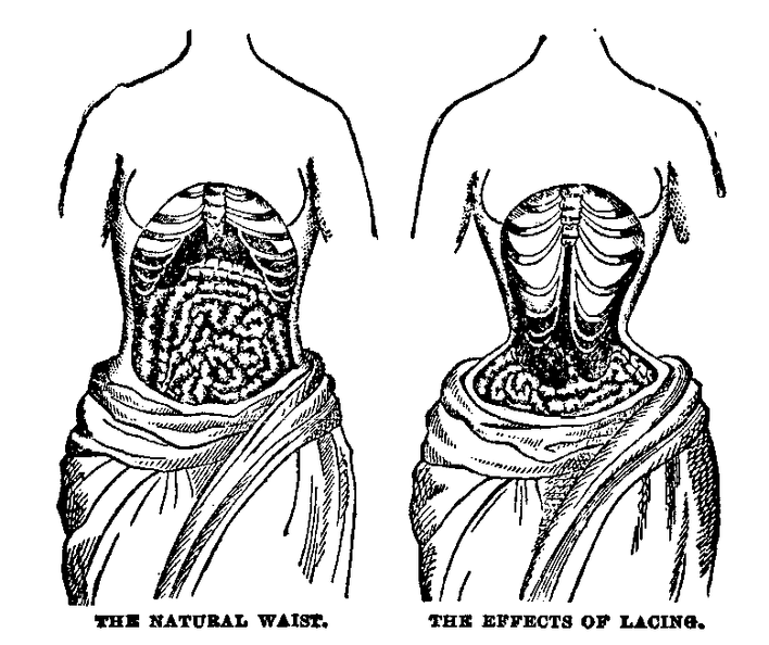 The Natural Waist and the Effects of Lacing.png