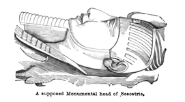 A supposed monumental head of Sesostris
