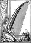 Turkish harp