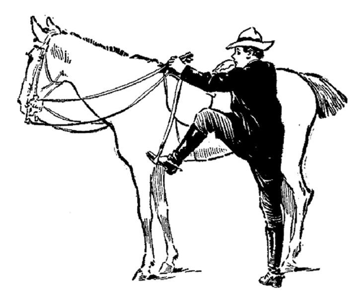 The wrong way to mount a horse—facing forward.png