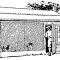 A home-made chicken coop built on the 'scratching-shed' plan