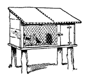 A home-made rabbit house