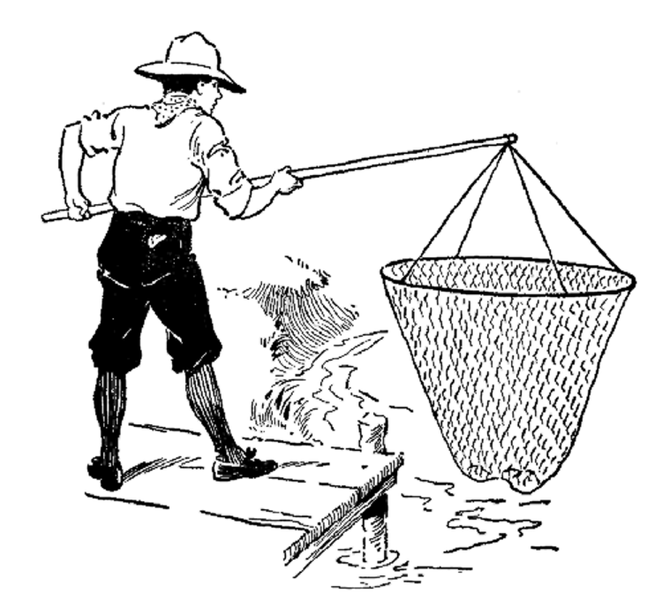 An excellent device for catching minnows.png