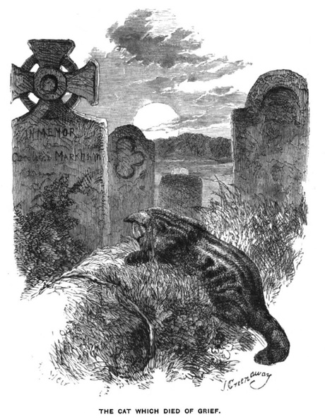 The cat which died of grief.jpg
