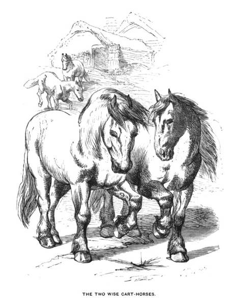The two wise cart-horses.jpg