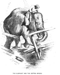 The Elephant and the Rotten Bridge