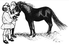 Boy and girl feeding a pony an apple