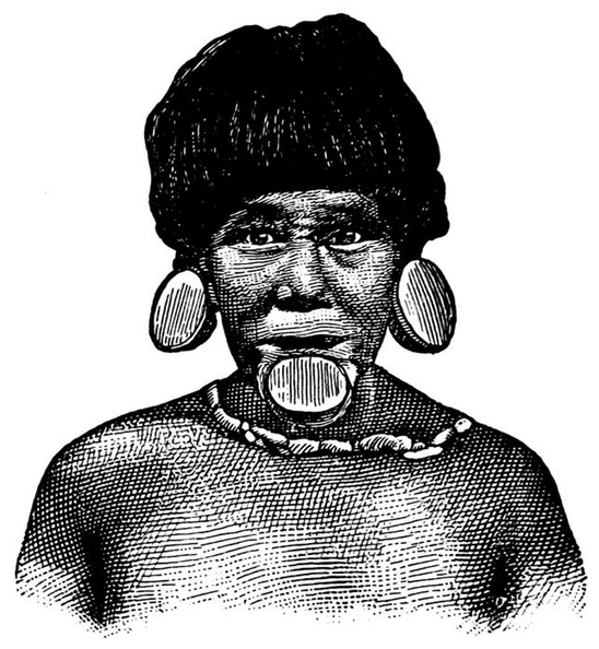 Botocudo Indian with Lip-plug.jpg