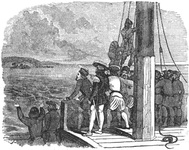 First sight of land from Columbus' ship