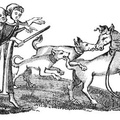 A Horse baited with Dogs