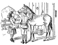 Boy and Girl feeding a horse