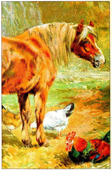 Horse and chickens.jpg