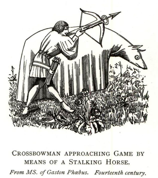 Crossbowman approaching game.jpg