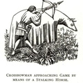 Crossbowman approaching game